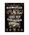 Filmposter Harry Potter Magie 61 x 91 cm