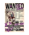 Filmposter Suicide Squad Harley Quinn Wanted 61 x 91 cm